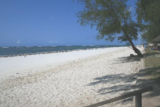 Diani Sea Lodge: Diani Beach from garden