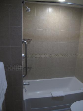 แฮมป์ตัน อินน์ สวีท เม็กซิโกซิตี้เซ็นโทร ฮิสทอริโค: Bathroom