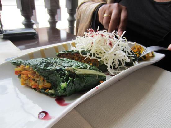 Fusiones Restaurant: Spring Rolls