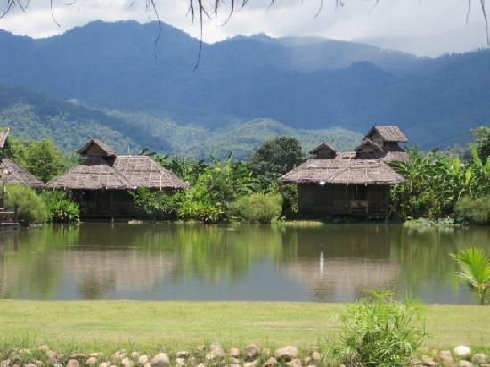 Bueng Pai Farm: legend in the mountains