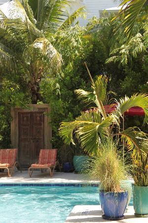 Parrot Key Hotel and Resort: La piscina 2