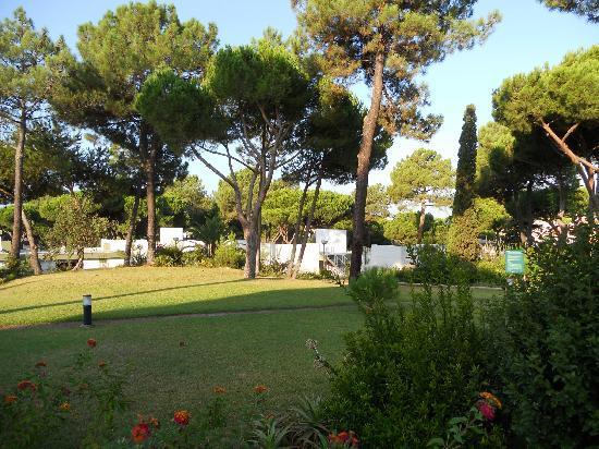 Pinhal da Marina: View from our terrace