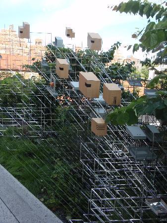 ไฮไลน์: High Line Bird Feeder