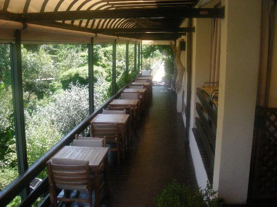 Hotel Cernia: terrazza