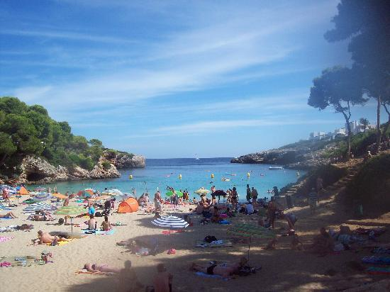 Mar Hotels Ferrera Blanca: Cala Esmeralda - five mins from hotel