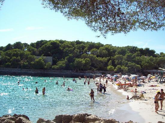 Mar Hotels Ferrera Blanca: Cala Mondrago