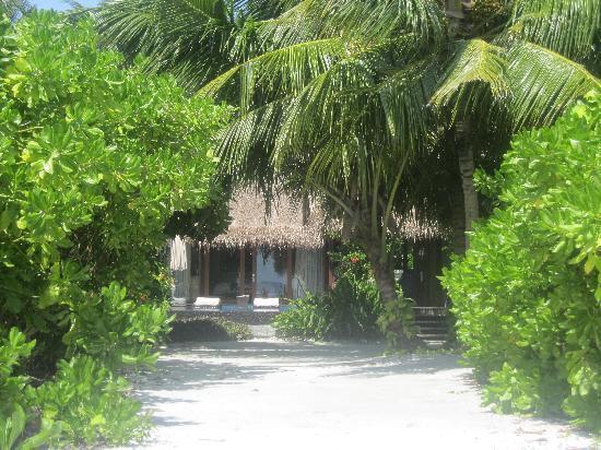 แชงกรีลาส์ วิลลิงกีลี รีสอร์ท แอนด์ สปา: Our garden and villa (from the private beach)