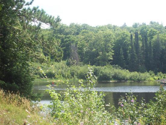 Halfway Lake Cottages: rhe lake