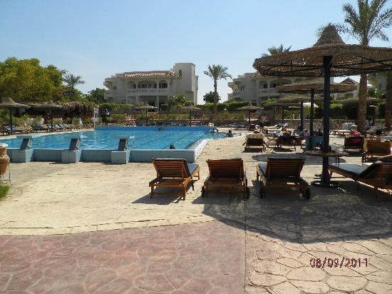 Tropitel Naama Bay: olympic pool