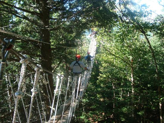 Bretton Woods: The Rope Bridge