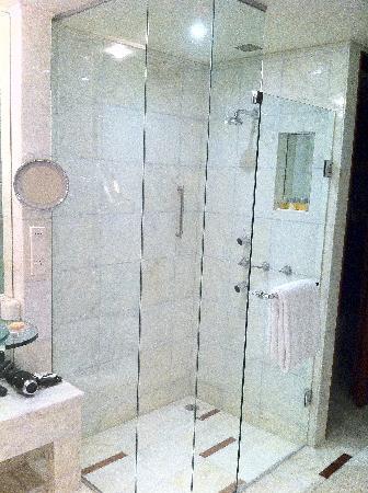 พาร์ค ไฮแอท เมลเบิร์น: Shower