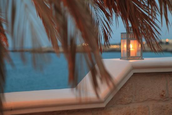 บีแอนด์บีเบลาวิสตา: terrace