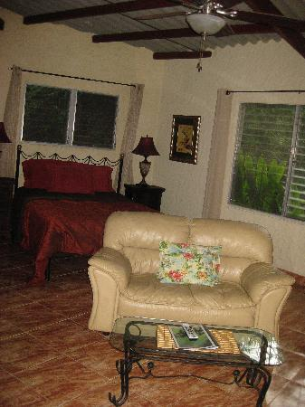 The Golden Frog Inn: This was a lovely and spacious room.