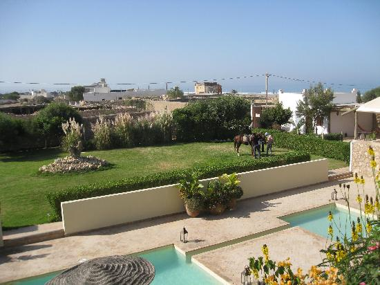 Rebali Riads: Garden, pool, and horse
