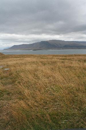 Videy Island: Viðey