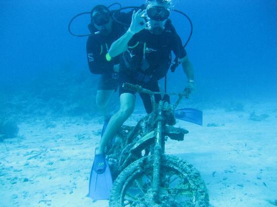 Akumal Dive Shop: Quien se olvido la moto