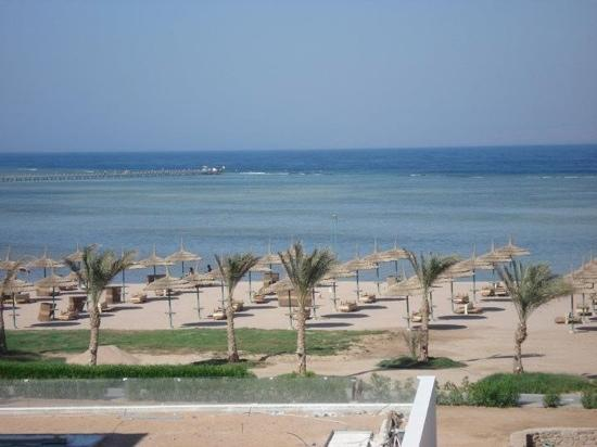 TUI Magic Life Sharm el Sheikh: view