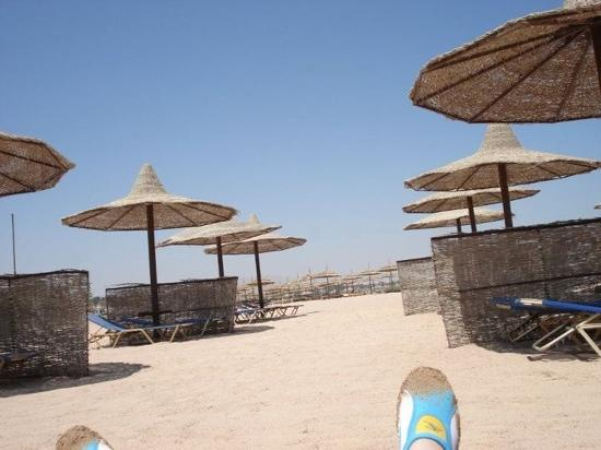 TUI Magic Life Sharm el Sheikh: beach