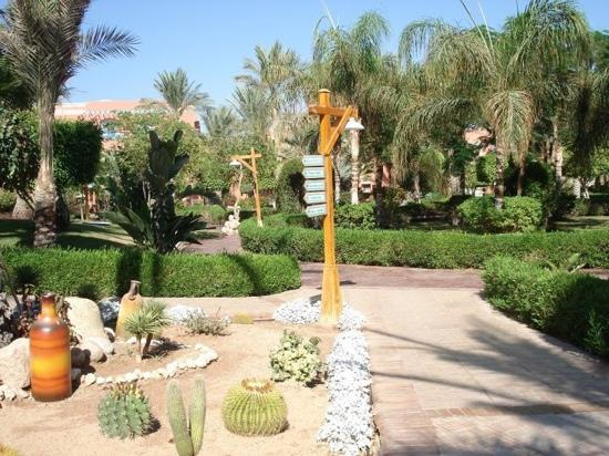 TUI Magic Life Sharm el Sheikh: hotel grounds