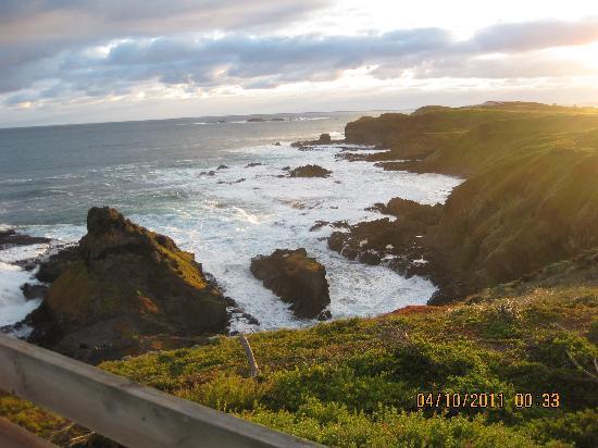 Phillip Island Nature Parks - Penguin Parade: Coastline