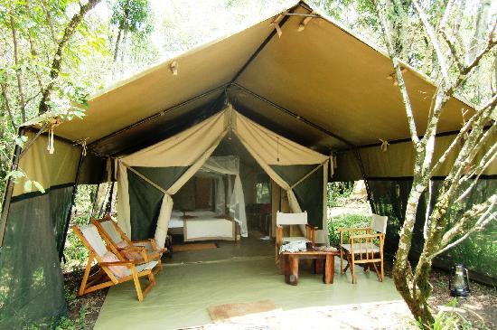 Mara Bush Camp: tent #4