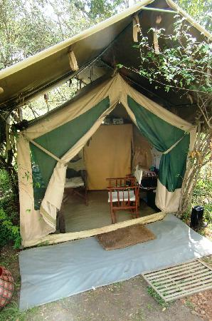 Mara Bush Camp: office tent
