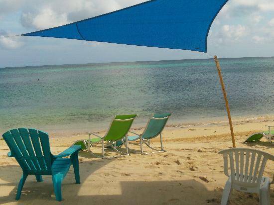 Canoe Bar: tarps to keep you cool