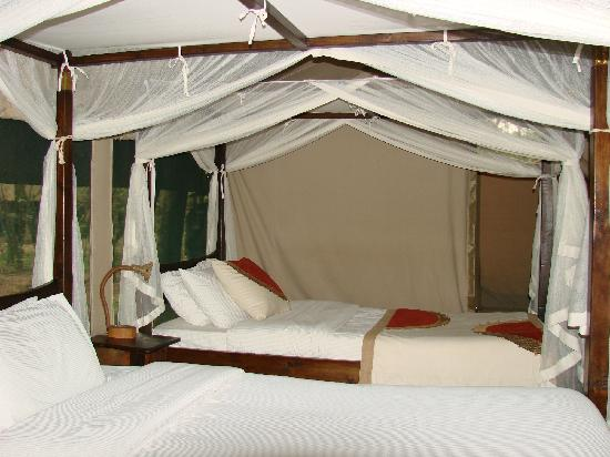Mara Bush Camp: tent #4