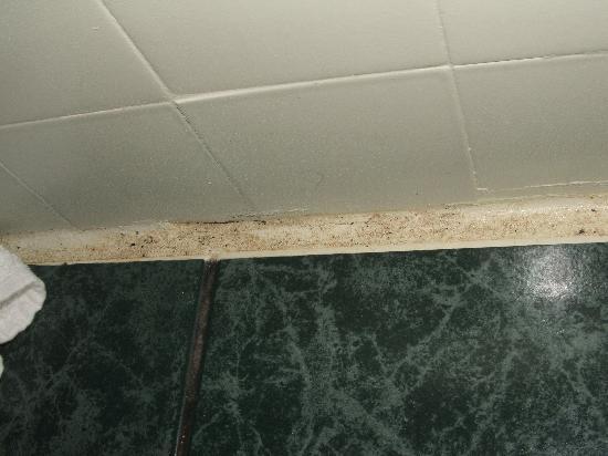 โรงแรมเดอะนิวยอร์คเกอร์: Mouldy bathroom floor