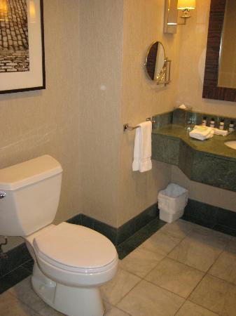 โรงแรมอินเตอร์คอนติเนนตัน มอนทรีออล: bathroom 1