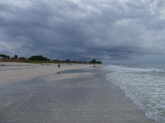 North Jetty Beach: The beach