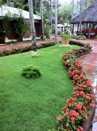 อัคฮิล บีช รีสอร์ท: garden. beutiful.