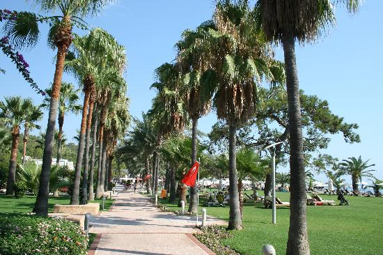 Club Med Palmiye: villagio