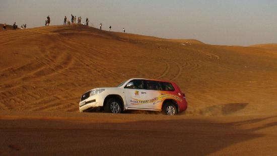 Lama Desert Tours & Cruises L.L.C.: special 4 wheel vehicles are used for desert safari