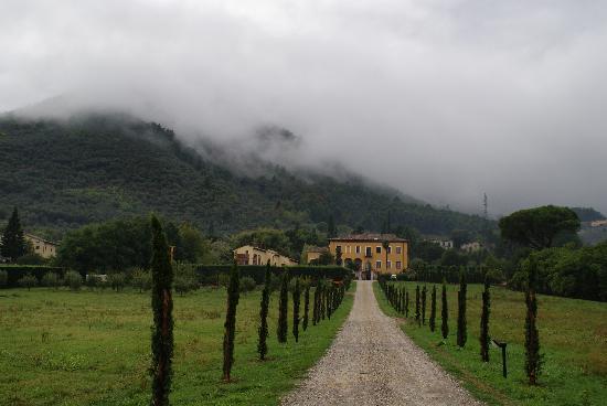 Hotel Villa Cheli: The drive up to the villa