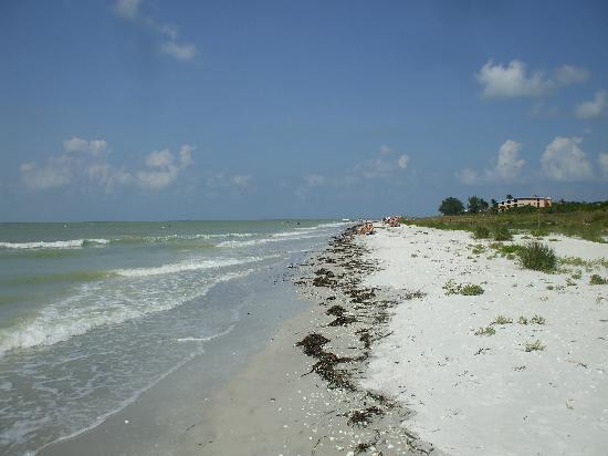 Tortuga Beach Club Resort: beach