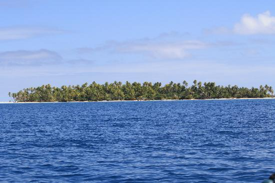 Tikehau Ninamu Resort: The motu from the boat