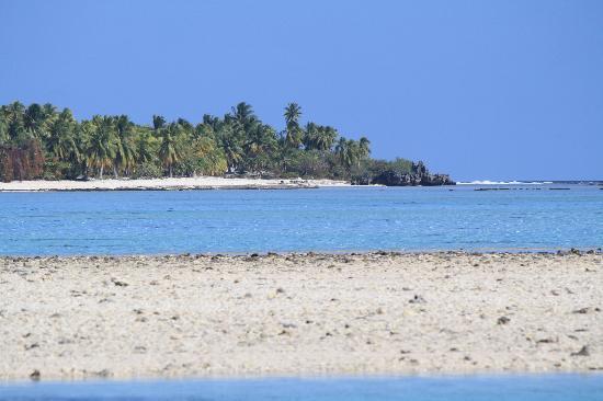 Tikehau Ninamu Resort: The beach 3