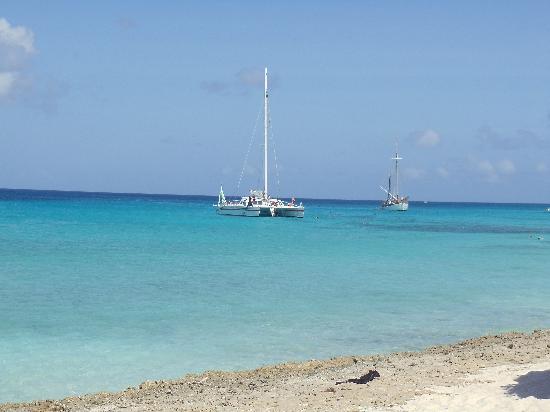 Bucuti & Tara Beach Resort Aruba: Calm and relaxing
