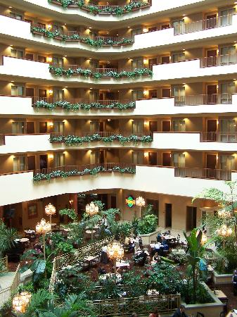 Embassy Suites by Hilton Charleston: Lobby/atrium area-Very open and bright