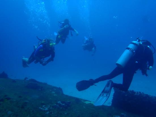 Nautilus Diving & Training Center: Wreck C 52