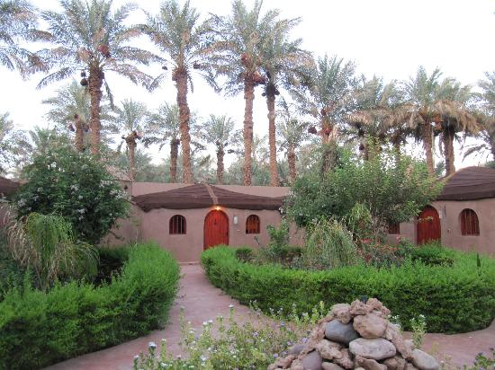 Riad Lamane: The greenery in front of our room
