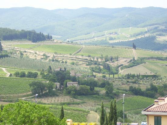 Prestige Rent: Beautiful Tuscany View