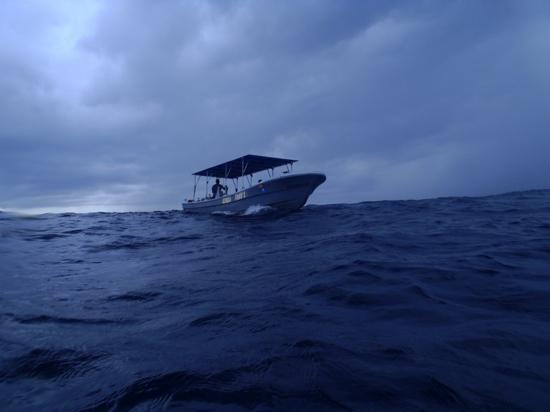 Interactive Aquarium: Boat