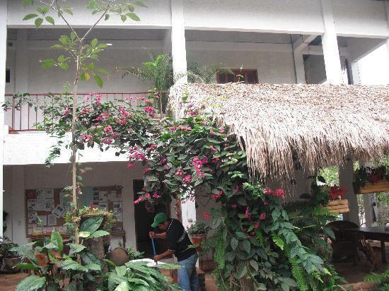 La Mariposa Spanish School and Eco Hotel: The Mariposa Terrace