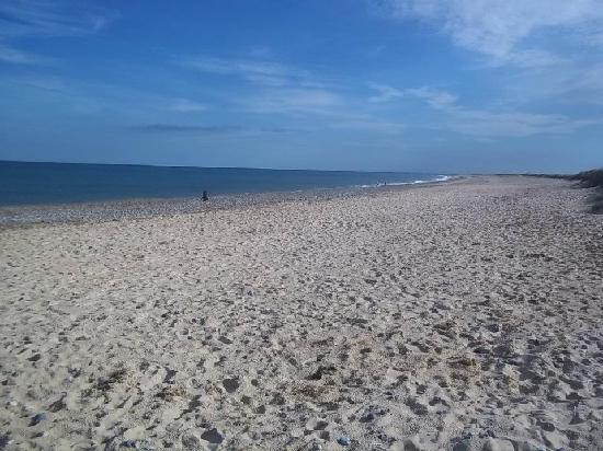 Seashore Holiday Park - Haven: beach just 2 seconds from park