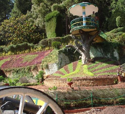 Hotel Sapphire Grand: Botanical Gardens