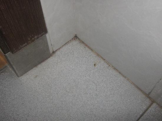 เฮช10 ยูโรป้า ปาร์คโฮเต็ล: the ants hole bathroom