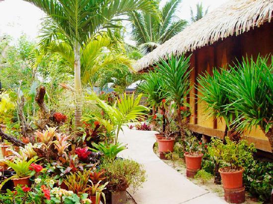 Muri Beach Hideaway: Garden pathway