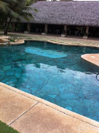 Bohol Beach Club: pool